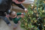 DecoratingTree1