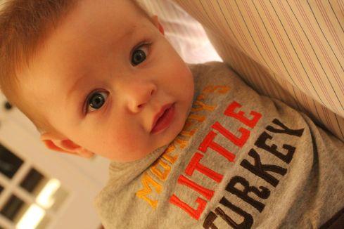 LittleTurkey