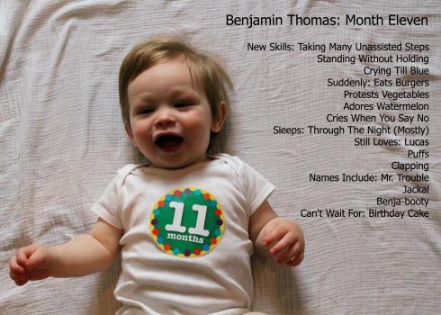 11Months -- Details