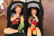 These boys love the rented Disney stroller